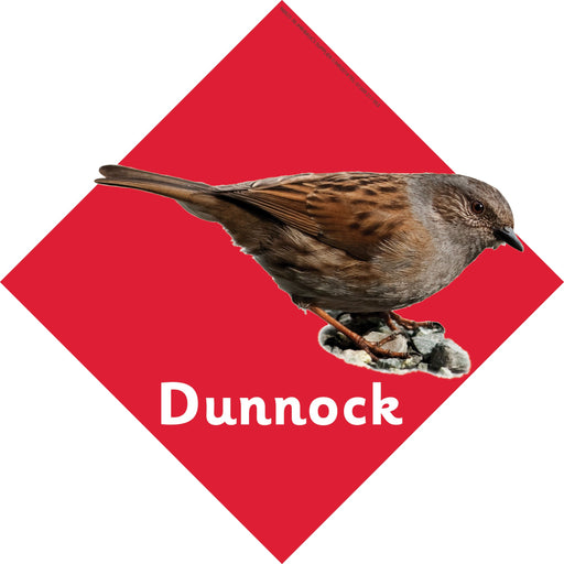 British Birds signs  Dunnock