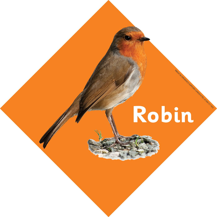British Birds Signs Robin