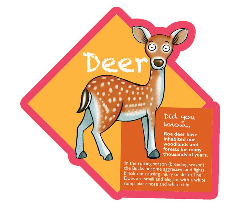 Did you know Woodland characters Deer