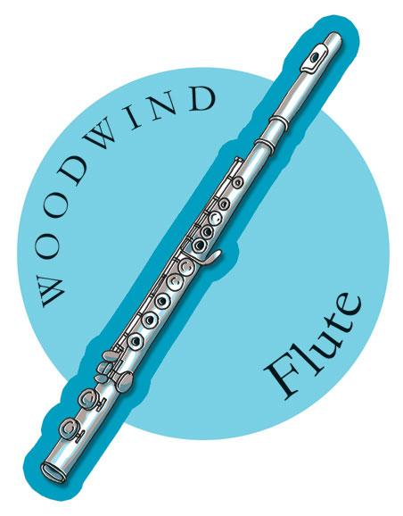 Musical Instruments Shop Signs Flute
