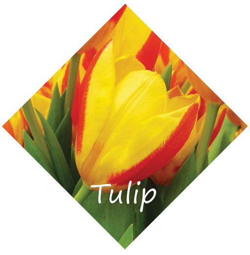 Tulip Diamond Flower Sign