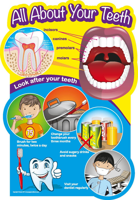 All About Your Teeth Sign