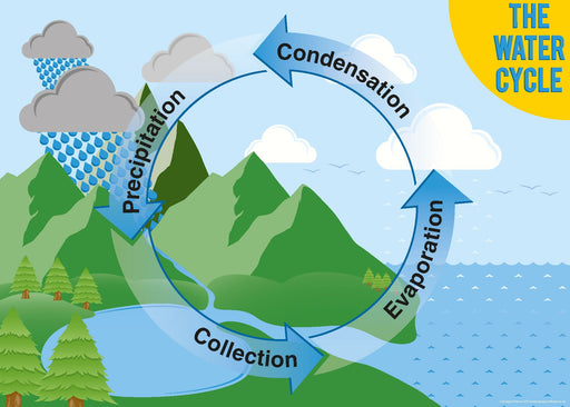 The Water Cycle Sign