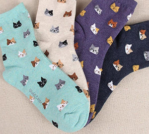 [] 5 colors meias sokken Hosiery Ladies cute Female Autumn New sockdresskily-dresskily