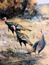 Load image into Gallery viewer, Ken Carlson - Hill Country Color - Framed Lithograph - Size 18.5 x 27 - Rio Grande Gobblers