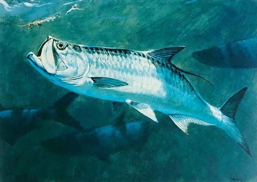 Al Barnes - 2005 Texas Saltwater Stamp Print and Stamp - Framed Stamp Print - Print Size 12.5 x 14 - Framed Size 18 x 18.5 - Tarpon