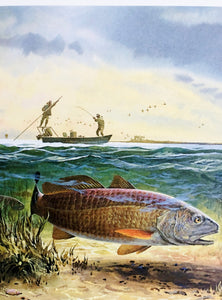 John P. Cowan - 1986 Texas Saltwater Stamp Print and Double Stamps - RedFish - Framed Stamp Print -Image 12.5 x 14 - Frame 17 x 18.5