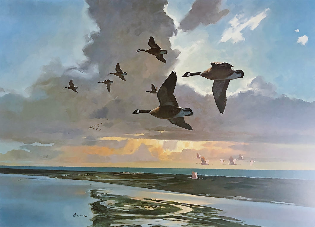 John P. Cowan - The Island Artist Proof - Framed Lithograph - Print Size 24.5 x 30.5 - Frame Size 32 x 38 - Canada Geese