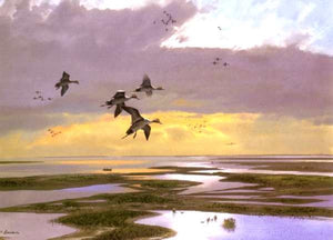 John P. Cowan - Wetlands Pintails - Duck Hunting 2001 - Framed Lithograph - Print Size 25.5 x 31 - Frame Size 33 x 39 - Duck Hunting