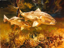 Load image into Gallery viewer, Chance Yarbrough - On The Prowl - Framed GiClee - GiClee Size 22 x 30 - Frame Size 31 x 37 - Redfish