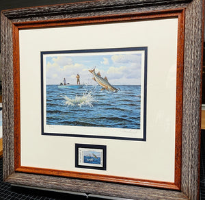 David Drinkard - 2007 Texas Saltwater Stamp Print and Stamp - Framed Stamp Print - Snook - Published by The Texas Parks and Wildlife Department TPWD - Print Size 12.5 x 14 - Frame Size 17 x 18.5 - Mint Condition with Brand New Custom Sporting Frame