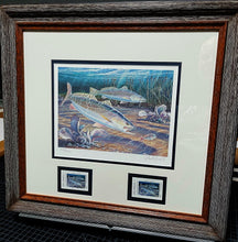 Load image into Gallery viewer, Herb Booth - 2000 Texas Saltwater Stamp Print w Double Stamps - Published By The Texas Parks and Wildlife Department TPWD - Framed Stamp Print - Speck - Print Size 12.5 x 14 - Frame Size 17 x 18.5 - Mint Condition - Brand New Custom Sporting Frame