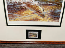 Load image into Gallery viewer, Herb Booth - 2003 CCA Coastal Conservation Association Stamp Print and Stamp - Framed Stamp Print - Redfish