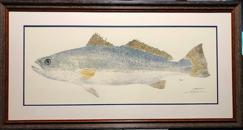 John Morrow - Trophy Speckled Trout Gyotaku - Framed GiClee - GiClee Size 14 x 30.5 - Frame Size 23 x 39