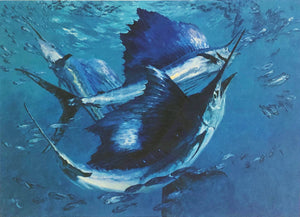 Stanley Meltzoff - 1988 GCCA Coastal Conservation Association Stamp Print w Double Stamps - Framed Stamp Print - Sailfish - Print Size 12.5 x 14 - Framed Size 18 x 18.5 - Mint Condition - Brand New Custom Sporting Frame