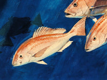 Load image into Gallery viewer, Al Barnes - Red Snapper - Framed GiClee - Print Size 22 x 30 - Frame Size 31 x 41