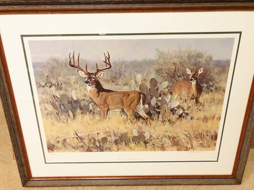 Ken Carlson - Phantom of the Flats - Framed Lithograph - Print Size 23 x 31.5 - Frame Size 32 x 40 - Whitetail Deer