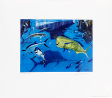 Load image into Gallery viewer, Al Barnes - 2008 Coastal Conservation Association CCA Stamp Print and Stamp - Framed Stamp Print - Blue Water Game Fish - Print Size 12.5 x 14 - Frame Size 17 x 18.5 - Mint Condition with Brand New Custom Sporting Frame