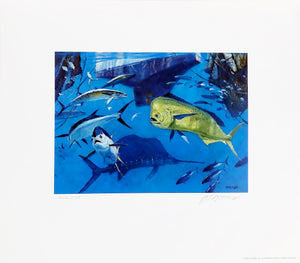 Al Barnes - 2008 Coastal Conservation Association CCA Stamp Print and Stamp - Framed Stamp Print - Blue Water Game Fish - Print Size 12.5 x 14 - Frame Size 17 x 18.5 - Mint Condition with Brand New Custom Sporting Frame