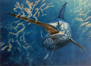 Don Ray - 2015 Texas Saltwater Stamp Print and Stamp - Framed Stamp Print - Print Size 12.5 x 14 - Framed Size 17 x 18.5 - Swordfish
