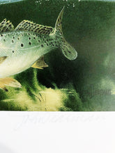 Load image into Gallery viewer, John Dearman - 2005 Coastal Conservation Association CCA Stamp Print and Double Stamps - Framed Stamp Print - Redfish & Speckled Trout