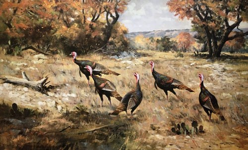 Ken Carlson - Hill Country Color - Framed Lithograph - Size 18.5 x 27 - Rio Grande Gobblers