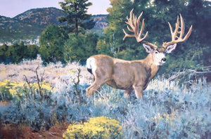 Ken Carlson - Mule Deer - Framed GiClee - GiClee Size 22 x 30 - Frame Size 31 x 42 - Magnificent Mule Deer
