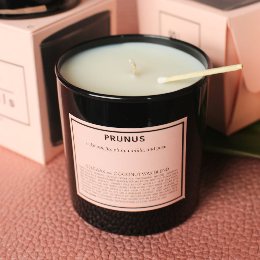 Boy Smells Prunus Candle | Hemlock Rose