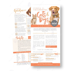 Supporting Cats & Dogs Rack Card