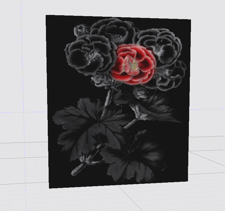 Rose on Black, Canvas Print