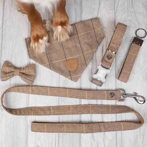 Tweed Dog Collar and Accessories
