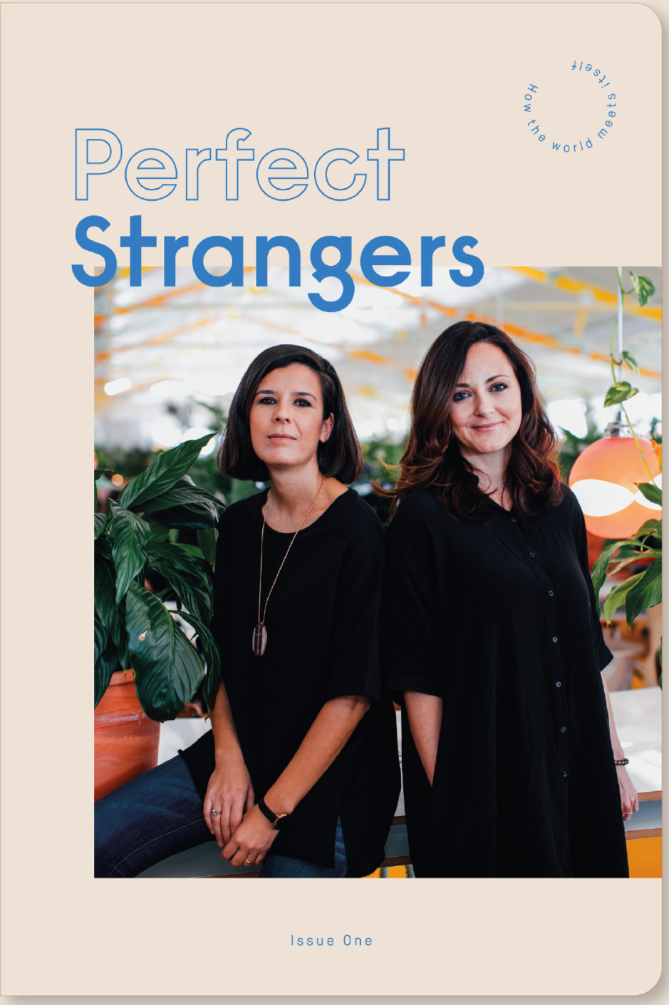 Perfect Stranger Magazine #1 - Frab's Magazine & More