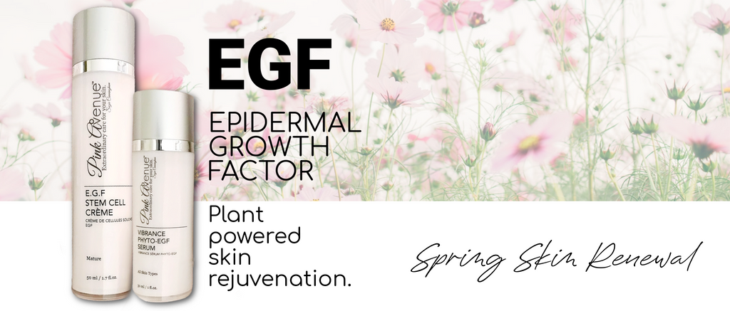 Best EGF skin care, Pink Avenue, Toronto, ON, Canada. EGF Stem Cell Cream, Vibrance Phyto EGF Serum