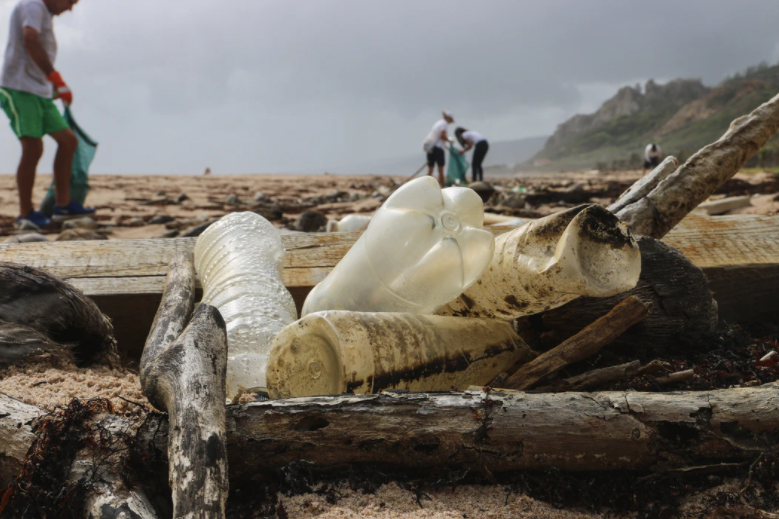 plastic pollution beach cleaning