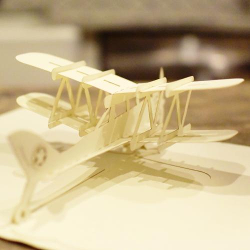 Tuyen Greeting Card - Airplane