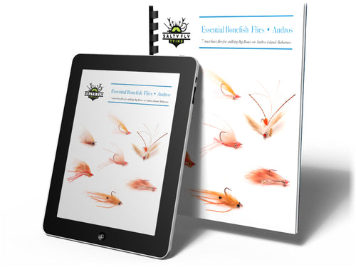 Essential Bonefish Flies - Andros (eBook)