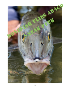 Bonefish Flies Abaco (Paperback)