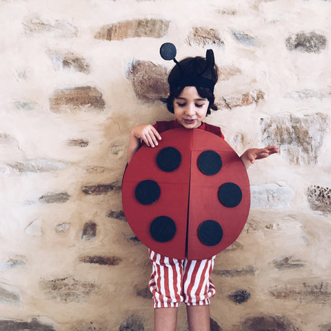 Cardboard ladybird costume by Mini mad Things
