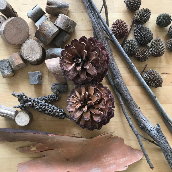 A collection of pine cones and wood for craft