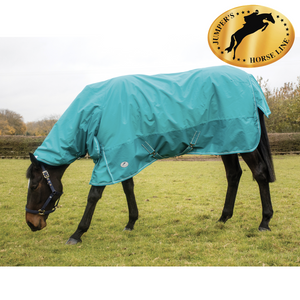 JHL essential LW extra combo rug 6'0