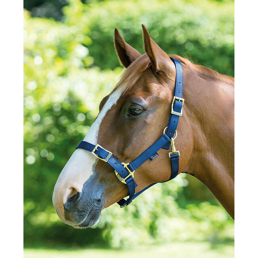 Shires Pro Adjustable Headcollar (410)
