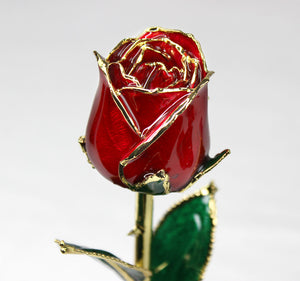 24K Gold Dipped Rose (Red)