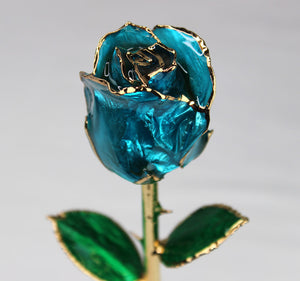 24K Gold Dipped Rose (Sky Blue)