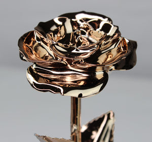 24K Gold Dipped Rose (Rose Gold)