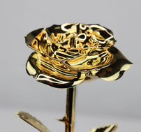 24K Gold Dipped Rose (Gold)