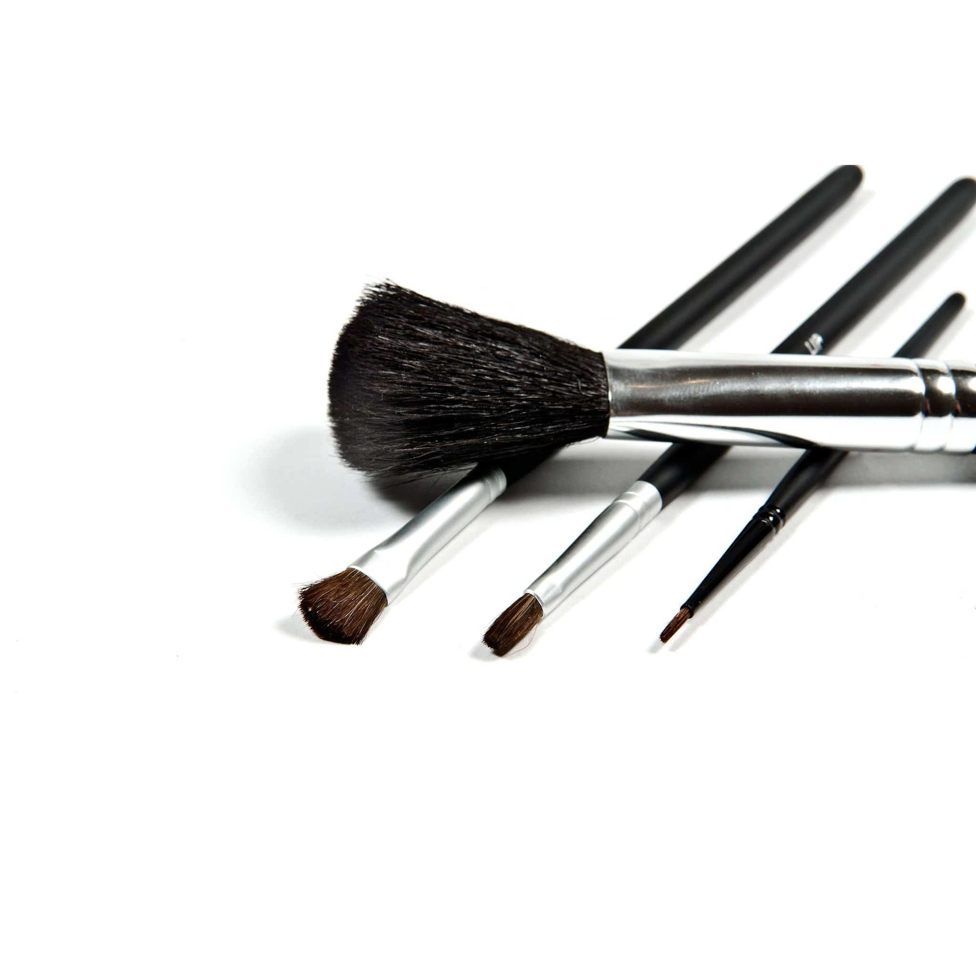 Danyel Cosmetics Brushes Danyel' Professional Cosmetics Brush Collection