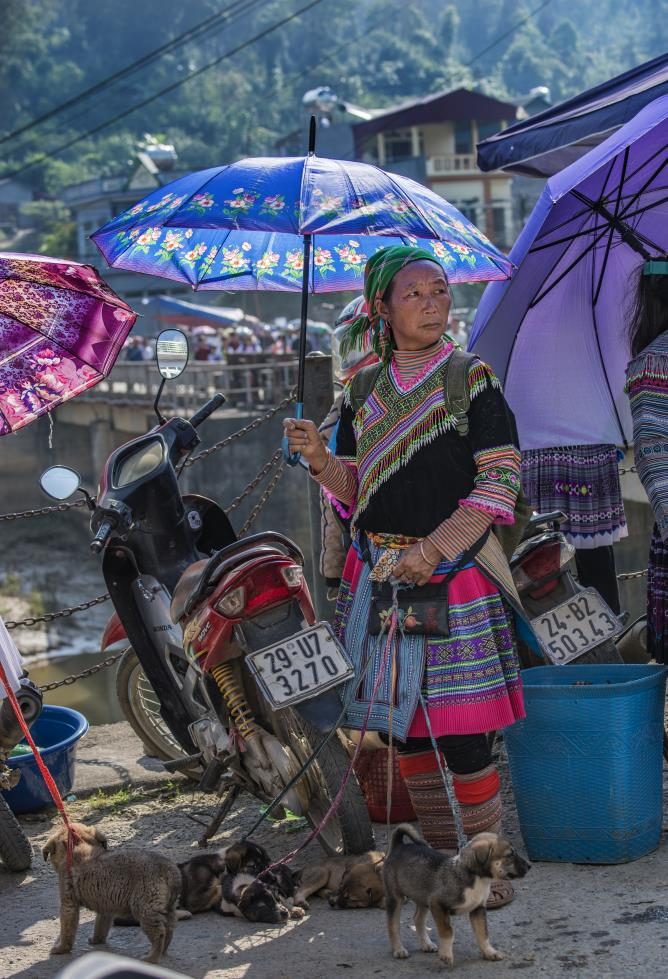 The Hmong Flower Women at the Sunday market in Bac Ha