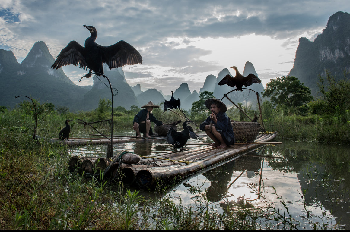 A skilled team of fishermen and cormorant on a bamboo raft