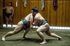 Sumo wrestlers training in their stables