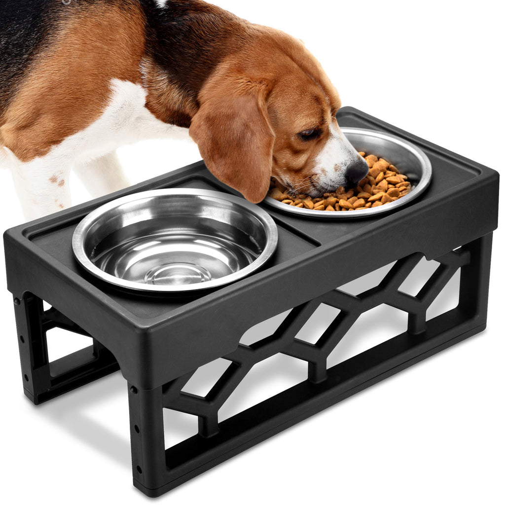 Should dogs eat from Elevated Dog Bowls?